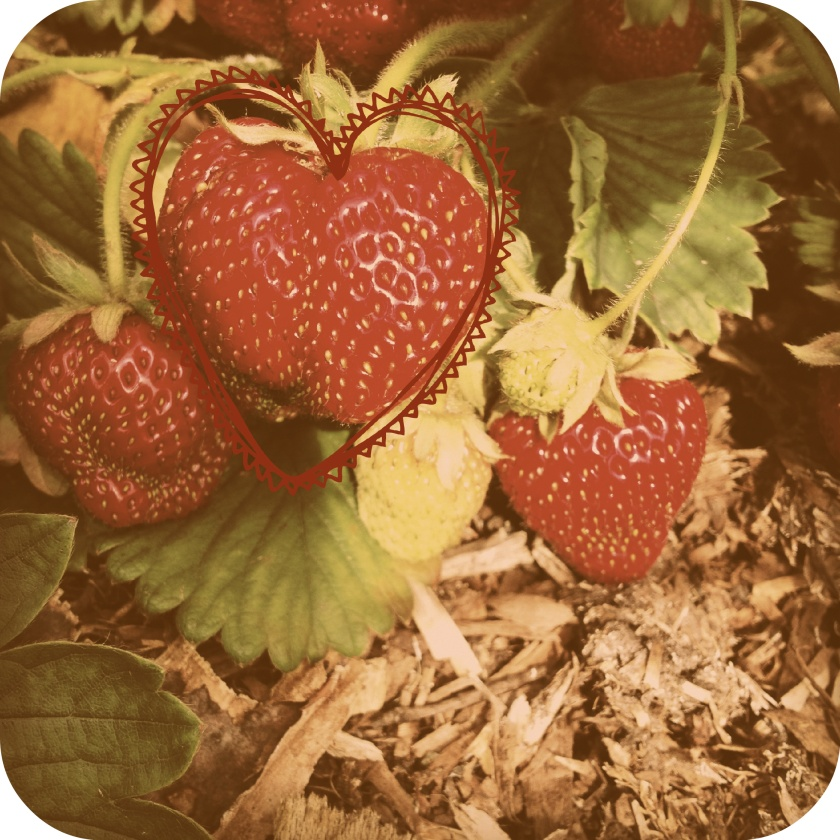 strawberry_edit