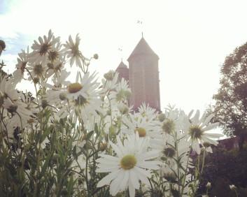 Vita's magical white garden